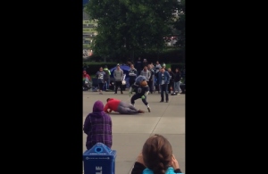 Video-Seahawks-Mascot-breaks-49er-fans-ankles