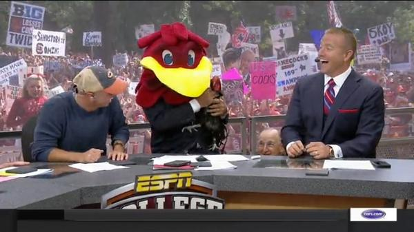 top-10-funniest-gameday-signs-from-south-carolina-missouri